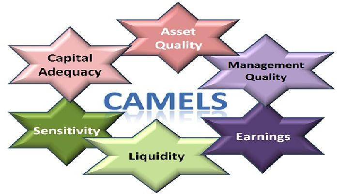 camels-rating-system